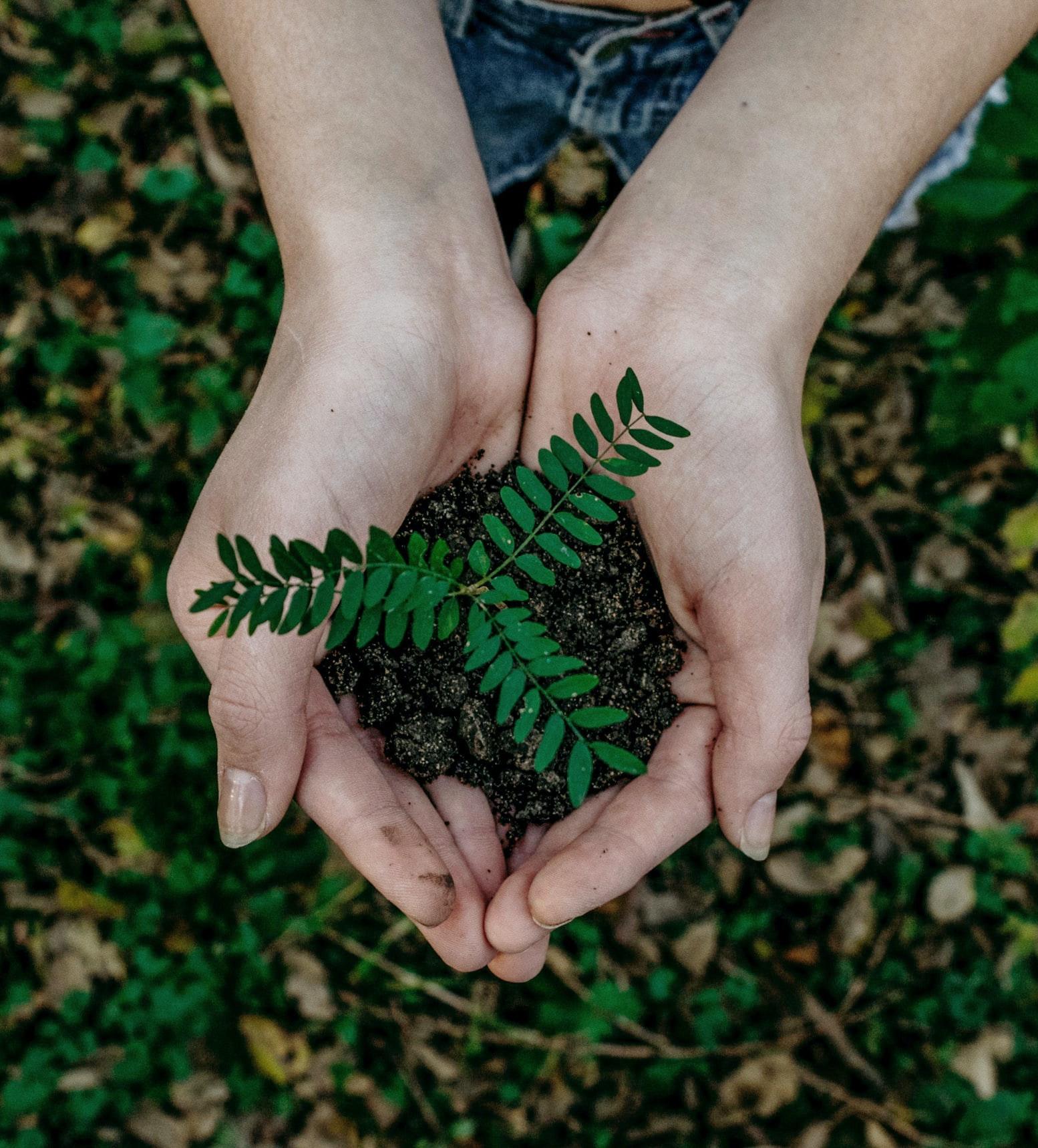 Därför sörjer jorden – en seminariehelg med Peter Halldorf