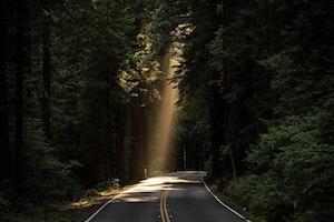 Leva med ovisshet – samtalscirkel om existentiell hälsa